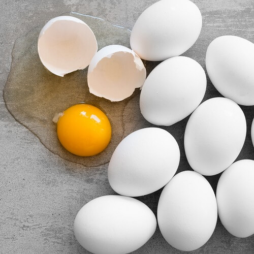 Best Protein Sources for Building Muscle