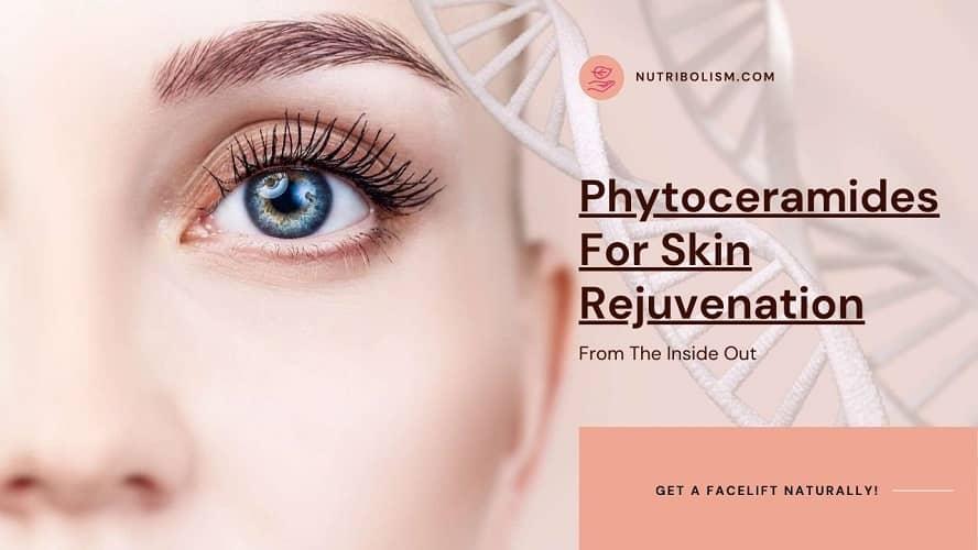 Phytoceramides For Better Skin: